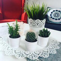Home 💚 decoration interior