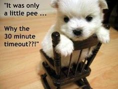cute little thing...