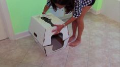 Cats Desire disposable litter boxes end daily scooping and sifting. From the experts at DIYNetwork.com.
