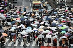 Download this free HD photo of rain, umbrella, street and crowd in Japan by Alex Block (@alexblock)