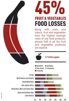 SAVE FOOD: Global Initiative on Food Loss and Waste Reduction - Fruit losses #GROWmethod #foodwaste