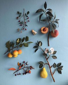 amazing paper fruit and foliage by Ann Wood Paper Fruit, Ann Wood, Jolie Photo, Paper Flowers, Art Flowers, Flowers Nature, Planting Flowers, Flowers Garden, Summer Flowers