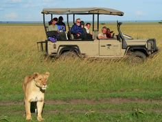 Go on an African safari. The best way to see animals in in their natural habit- NOT in a zoo.