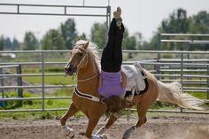 "Sandra (actress Kate Ross), trick riding on horseback in #Heartland season 5 episode 5 titled ""Never Let Go""."