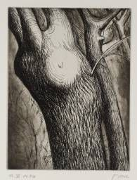 View Trees, Trees VI Dead Ash By Henry Moore; Intaglio print on paper; Access more artwork lots and estimated & realized auction prices on MutualArt. Henry Moore Drawings, Graphic Prints, Graphic Art, Etching Prints, Architecture Background, In The Zoo, Natural Forms, Magazine Art, Art Market