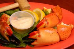 Awesome Stone Crabs!