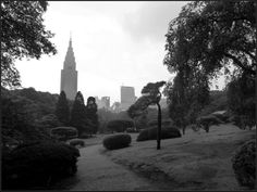 A peaceful part of the hectic life in Tokyo. Shinjuku central park, Tokyo, Japan