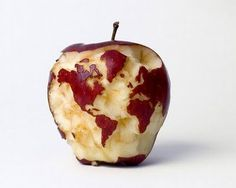 The world is your apple. #apple #globe #fruit