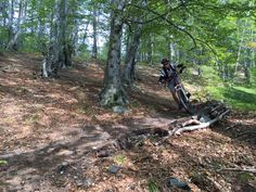 Straja Enduro MTB • Mountainbike » Outdooractive România
