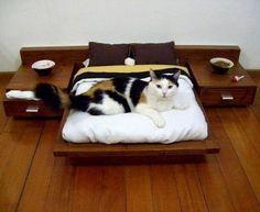 cats_need_furniture_too_32_pics-6
