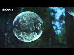 The beauty and majesty of a frozen bubble in 4K - Techly