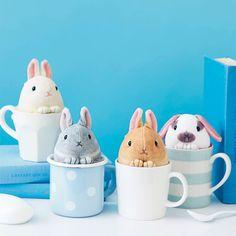 ! QUE MÁS + taza de té de polvo de conejo reunión de limpiador | Felissimo