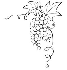 Illustration of Set design elements -- grape with stamp vector art, clipart and stock vectors. Grape Drawing, Vine Drawing, Leaf Drawing, Wood Burning Patterns, Wood Burning Art, Vine Design, Wine Bottle Crafts, Chalkboard Art, Bible Art