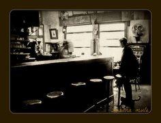 el hombre y el gato en el bar