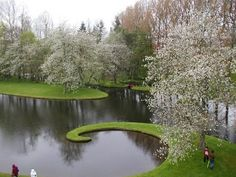 O Jardim da Especulação Cósmica - Simplesmente maravilhoso_1271431670567