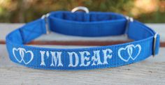 Deaf Dog Collars | DEAF Martingale Dog Collar - Reserved listing - Custom made for ... Deaf Dog Training, Puppy Training Schedule, Malinois Dog, Martingale Dog Collar, Shock Collar, Crazy Dog Lady, Dog Safety, Dog Owners, Best Dogs