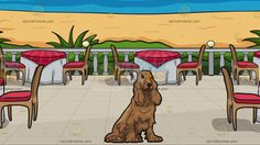 A Pretty Cocker Spaniel With A Restaurant Patio Overlooking The Ocean Background:  A dog with shaggy long brown fur black nose and eyes long ears sitting on the floor looking comfortable and pretty and A patio with a blue sea view beige sand green plants five round tables wrapped in white and red cloth brown chairs with red cushion
