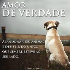 Jamais abandone o seu melhor amigo (qualquer animal)! Resgatem, adotem e castrem com amor e responsabilidade a todos.