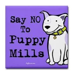 "Say NO to puppy mills. That means saying no to pet shops and lots of online ""breeders."" There are too many other wonderful animals out there waiting for a loving home.    #pets #care #puppy #dogs #puppymills #freedom #educate"