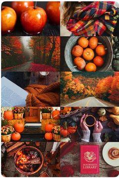 Hello Autumn, Fall Weather, Fall Pumpkins, Autumn Leaves, Autumn Aesthetic,  Fall Harvest, My Heart, Fall Pics, Felt