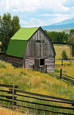 Is That A Green Roof Or What?? Old Log Barn