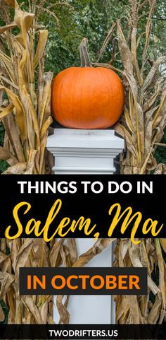 New England is an excellent destination in the autumn months. Known for its over-the-top foliage, its pumpkin patches, and it's old American history, it's a great place to get your…