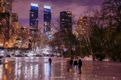 New York City Central Park, Top Pic, Times Square, Nyc, Rain, Travel, Rain Fall, Viajes, Trips