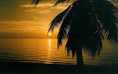 Promueven a Honduras como destino turístico de República Dominicana | HONDURAS POSITIVA | Lo mejor de mi país