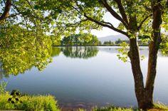 So heavenly in #Taanayel lake بحيرة #تعنايل متل الجنة By Abbass Moussa…