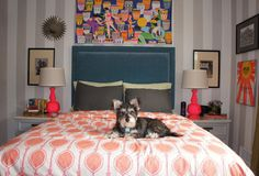 Averyl's Colorful Eclectic Bedroom My Bedroom Retreat Contest