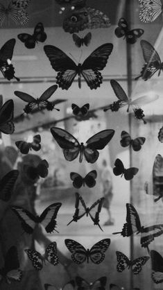 Imagen de butterfly and black and white aesthetic wallpaper Mariposas uploaded by Moira on We Heart It Black Aesthetic Wallpaper, Aesthetic Iphone Wallpaper, Aesthetic Wallpapers, Photo Wall Collage, Picture Wall, Cute Wallpapers, Wallpaper Backgrounds, Butterfly Wallpaper Iphone, Black And White Wallpaper Iphone