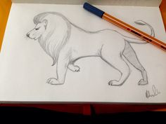 Type: Lion, The King.  Name: Rafa