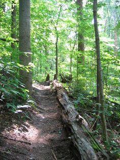 Charlottesville trails | Charlottesville.org