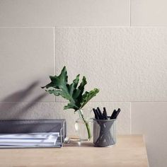 Look at this Decorum™ Ideal White in unpolished and textured surfaces in 12 x 24 in a brick pattern. Also available in 24 x 24 and 12 x 12 and trim sizes 3 x 12, 6 x 12 and 1 x 6.