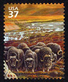 2003 37c Artic Tundra - Musk Oxen and Caribou Scott # 3802 d.