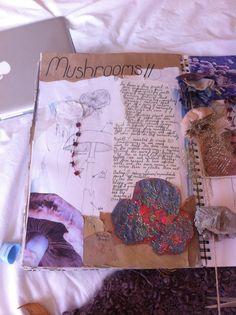 sketchbook page // focusing my experiments on mushrooms