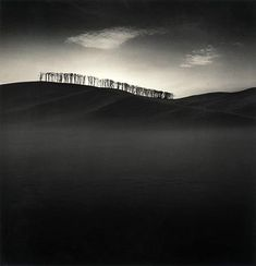 artnet Galleries: Hilltop Trees, Study 2, Teshikaga, Hokkaldo, Japan by Michael Kenna from Jackson Fine Art