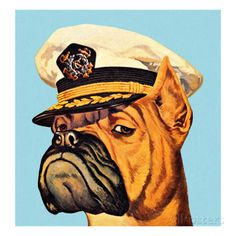 Boxer Dog Wearing Captian Hat Affiches van Pop Ink - CSA Images - bij…