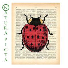 Ladybug print- Unique and Original Design - vintage illustration printed on a Vintage Dictionary page. $10.00, via Etsy.