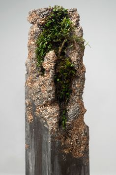 Jamie North, Boomtown 2011 - (detail) fibre reinforced concrete with Australian… Cement Art, Concrete Crafts, Concrete Sculpture, Garden Sculpture, Rock Sculpture, Garden Art, Garden Design, Papercrete, Concrete Pots