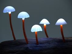 These enchanting lamps by Great Mushrooming are made with reclaimed wood and LEDs.