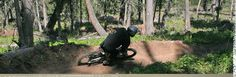 Mountain biking in and around the Big Sky area means miles of back country scenery, wildflowers, wildlife, and few human encounters.