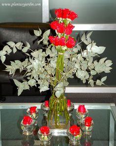 Bouquet de Rosas rojas con Eucalypto cinerea