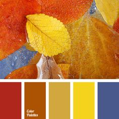 Bright and colorful palette that fascinates with its richness and beauty. Hot and passionate shades combine harmoniously with cold blue color. Mustard and ochre are subdued and noble colors Living Room Color Schemes, Colour Schemes, Color Combos, Color Patterns, Red Colour Palette, Color Palettes, Maroon Color, Red Color, Orange Color
