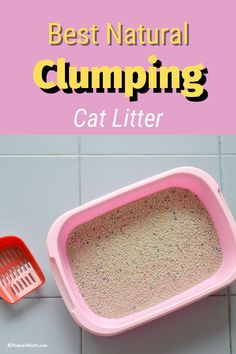 What is the best clumping cat litter for your feline friend? Discover some of the best natural litter that stops odor and tracking. You'll find two that aren't eco-friendly, but I included them as they're inexpensive and trusted brands. #clumpingcatlitter #catlitter #whatisthebestclumpingcatlitter #catcareproducts #bestcatlitterfortracking Best Cat Litter, Litter Box, Cat Tracker, Cat Hacks, Cat Scratching Post, Cat Life, Cool Cats, Kittens Cutest