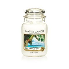 Coconut Bay™ : Large Jar Candles : Yankee Candle from The Yankee Candle Company. Beautiful Candles, Best Candles, Scented Candles, Candle Jars, Yankee Candles, Fragrance Online, Sent Bon, Summer Scent, Candle Diffuser