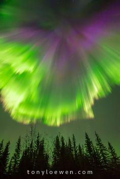(another good straight above you shot, with a limier green ~ DM) Aurora Borealis ~ Gillam, Manitoba, Canada