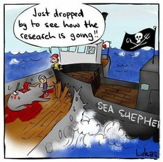 <3 Sea Shepherd <3 These amazing people risk their lives for whale conservation <3