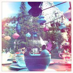 Dreaming of west coast fun at Disneyland ~ Disneyland Teacups