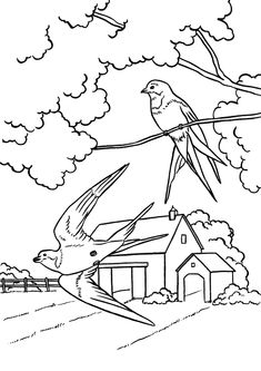 Spring Coloring Pages - Kids Spring Wild Birds Coloring Page Sheets of the Spring Season Summer Coloring Pages, Bird Coloring Pages, Printable Coloring Pages, Coloring Pages For Kids, Coloring Books, Landscape Drawings, Bird Drawings, Print Pictures, Colorful Pictures